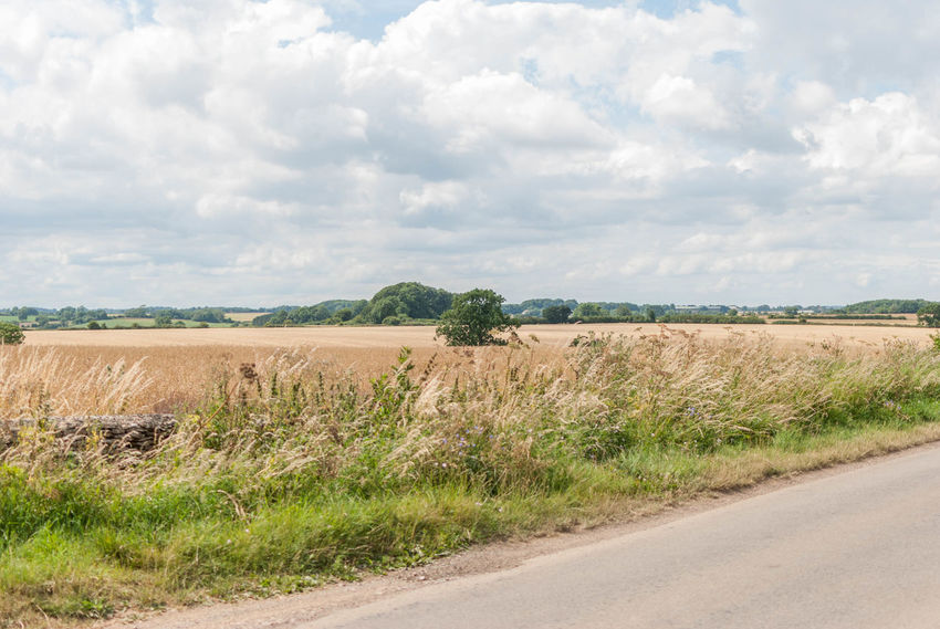 English hay field with road Day No People