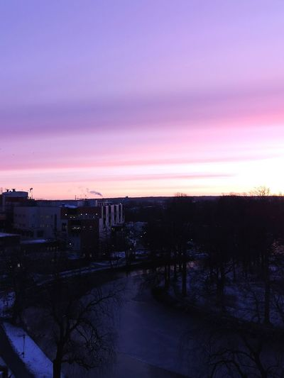 Soluppgång utanför jobbet Sunrise_sunsets_aroundworld Winter Outdoors Pink Sky EyeEm Selects Eyeemphotography Sweden Nature City Tree Cityscape Urban Skyline Sky Dramatic Sky Cold Cold Temperature