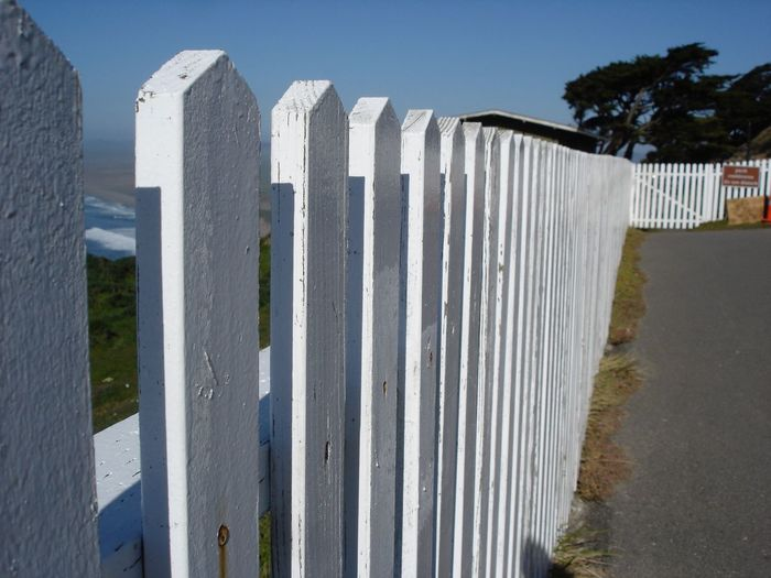 Fence at Point Reyes National Seashore in Marin County, CA. Fence My Favorite Photo Front Or Back Yard Gate The Great Outdoors - 2016 EyeEm Awards Marin County CA Narrow No Edit/no Filter No Filter, No Edit, Just Photography No Filters  No People Picket Fence Point Reyes Railing Repetition Seashore Sidewalk The Purist (no Edit, No Filter) The Way Forward USA White Wood Zaun Pattern Pieces Landscapes With WhiteWall The City Light Sommergefühle EyeEm Selects
