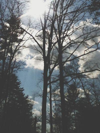 Nature North Carolina