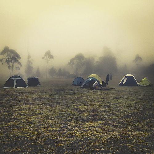 Música, naturaleza y amigos Adapted To The City Camping Day Ecuador Nature Photography Friends Life Natural Nature