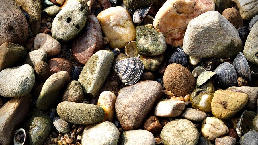 Shells and