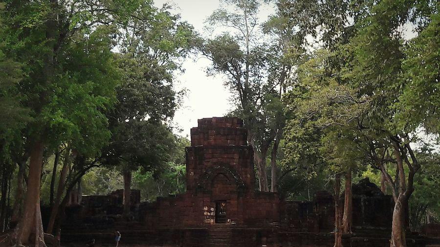 @ปราสาทเมืองสิงห์ Nature Tree First Eyeem Photo