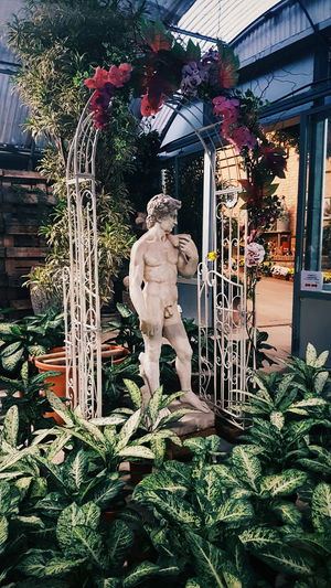 Human Representation Male Likeness Statue No People Sculpture Outdoors Tree Beauty In Nature Green Decor Flower Shop Nature Green Color Plant Places Vintage Retro Classical