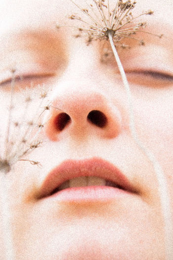 Close-up of woman with dandelions on face