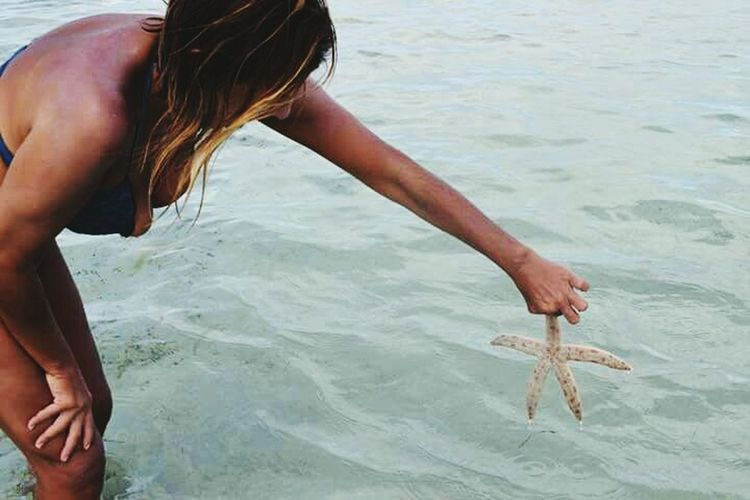 Starfish  Water Sea Human Body Part One Person People Adult Lifestyles Vacations Human Hand