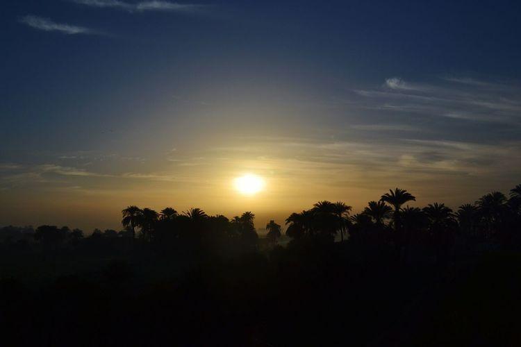 Sunrise Sun Sky Beautiful Landscape Nature Shadow Palms Traveling Holiday Egypt Hello World ✌ Eye4photography  Pictureoftheday