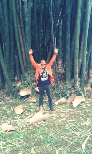 Giant Bamboo , me as scale (167 cm)
