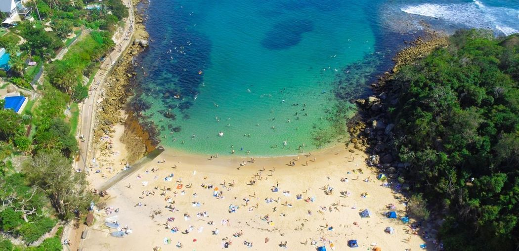 A paradise sheltered from the waves Nature Towel Manly  Sydney Shelly Drone  Love Family Relax Weekend Water Australia Nsw Travel Sand Waves Calm Sun Summer Swim Backpacking Sea Tree Sand High Angle View Aerial View Sky Tourism
