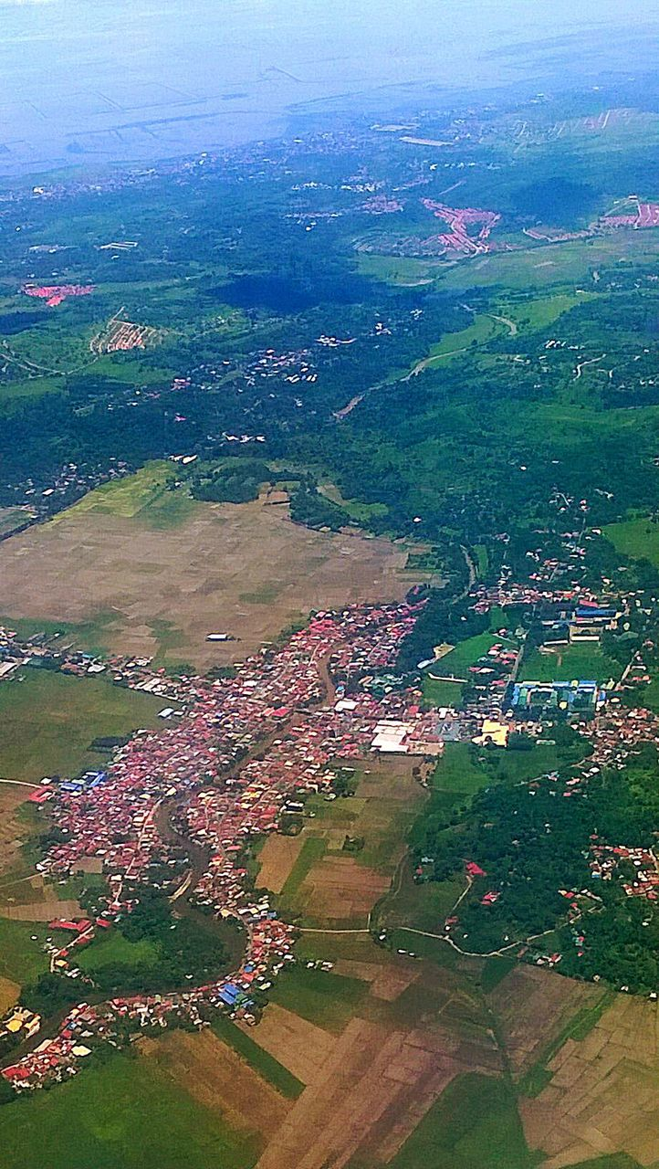 agriculture, aerial view, field, landscape, patchwork landscape, rural scene, scenics, beauty in nature, high angle view, nature, tranquility, no people, outdoors, day, green color, tree, grass, flying, rice paddy, sky