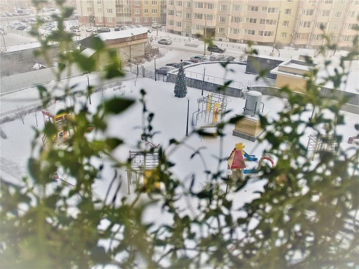 Green life and white winter New Year Plant Architecture Building Exterior Built Structure christmas tree City Day High Angle View Nature No People Outdoors Snow Spring Meets Winter Tilt-shift Tree White And Green Winter Meets Spring