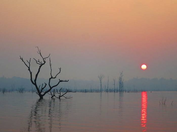 Bare Tree Beauty In Nature Branch Day Lake Laos Nature No People Outdoors Reflection Scenics Sky Sunrise Sunset Tranquility Tree Water