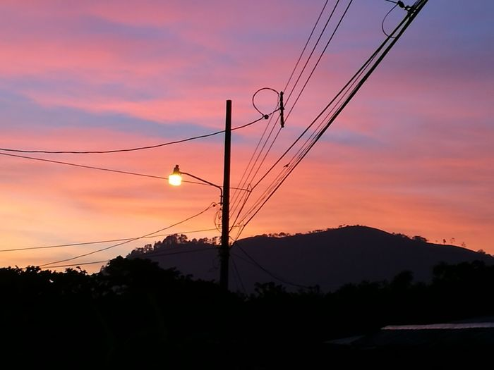 Bird Tree Technology Electricity Pylon Sunset Electricity  Cable Telephone Line Flying Silhouette