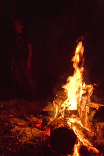 Beach Beachfire Bonfire Burning Charred Wood Danger Fire - Natural Phenomenon Fire Within Fireside Flame Flaming Heat - Temperature Illumination In The Shadows Introversion Introverted Logs Motion Night Night Time Outdoors Thoughtful Warmth Wood - Material Woodfire