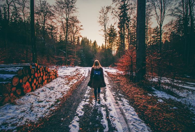 Mystery Girl - Part I. Winter Snow Trees Leafs Sundown One Person Girl Path Mystery Mysterious Wood Forest Blonde Girl Photostory Photography Nature Photography Eye4photography  Nature Vintage Mood Followme EyeEm Gallery Eyeemphotography Eye Em Nature Lover EyeEm Best Shots