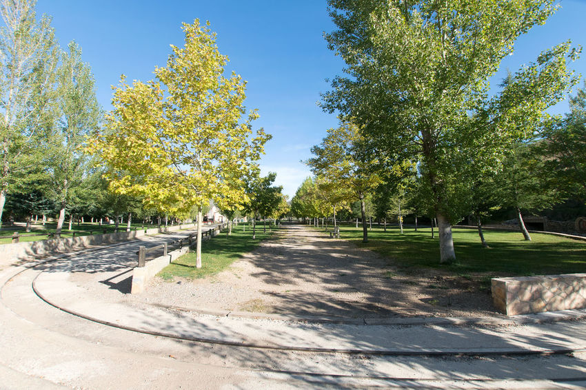 Utrillas Terual Moseo minerio y alrededores. Octubre 2018 2018 October Teruel Utrillas Beauty In Nature Day Direction Eddl Footpath Green Color Growth Land Nature No People Outdoors Park Park - Man Made Space Plant Shadow Sky Sunlight The Way Forward Tranquil Scene Tranquility Tree
