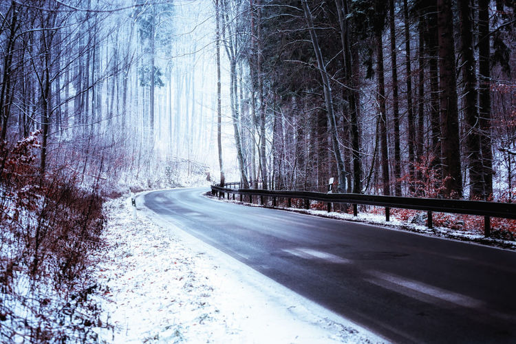 Tree Road Snow Transportation Plant Winter Cold Temperature Direction The Way Forward No People Nature Land Forest Tranquility Day Sign Curve Empty Road Non-urban Scene WoodLand Snowing