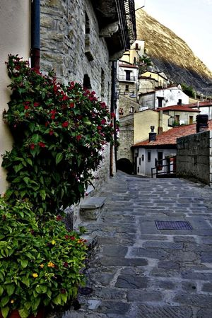 Architecture Built Structure Building Exterior Outdoors Plant Day No People Flower Growth Nature Window Box Autunno🍁🍁🍁 Italy🇮🇹 Tranquility EyeEmNewHere Maxepersonalphoto Borgo Antico Medieval Architecture Castelmezzano Mix Yourself A Good Time HDR Streetphotography