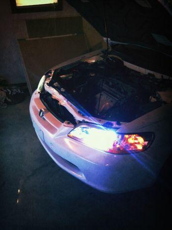 Blue Hid Headlights