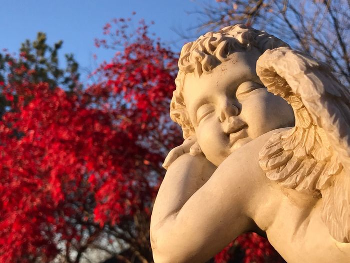 Low angle view of angel sculpture against red tree at park