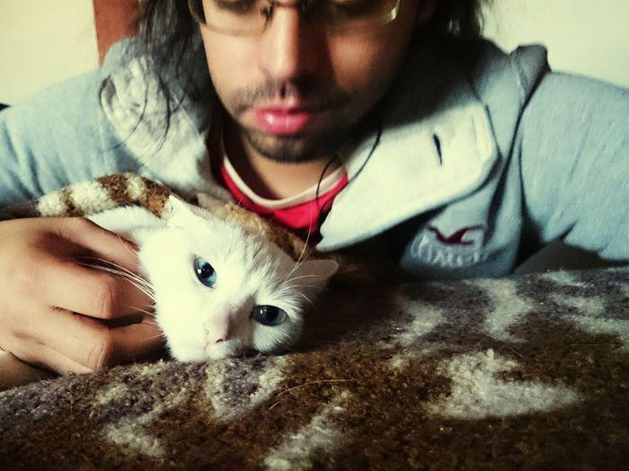 Pet Kitty!