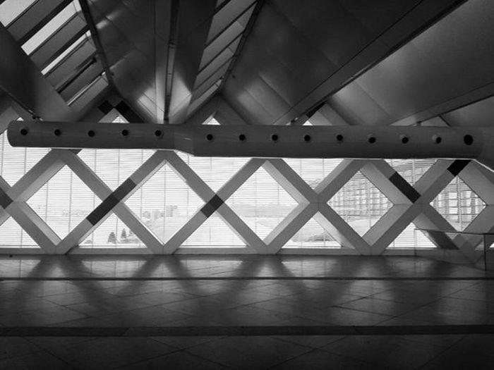 Rombos...geometría Station Atocha Architecture Arquitectura Arquitecturacivil Civilengineering Civilarchitecture Rombo Bnw Blancoynegro Monochrome Engineering Architecture_collection The Architect - 2016 EyeEm Awards