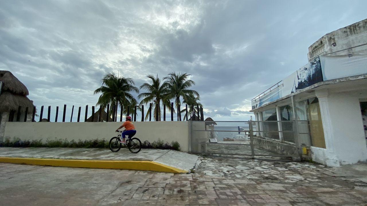 MAN RIDING BICYCLE ON PALM TREE