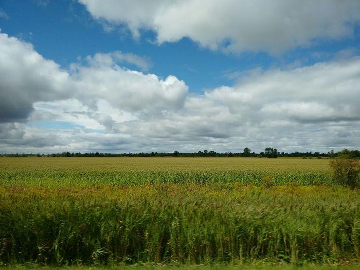St. Agathe, Quebec Roadside Landscape Fieldscape