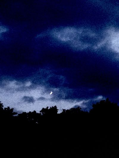 Night Sky Forest Woods Dark Moon Nature Natur Switzerland Schweiz