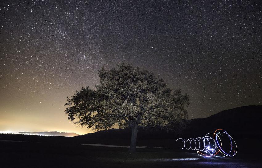 Atmosphere Atmospheric Mood Landscape Lights Lighttrails Lighttrailsphotography Night Lights Night Photography Nightsky Nightskyphotography Non-urban Scene Outdoors Sky Scenes Stars Tree Tree And Sky Tree Trunk Universe