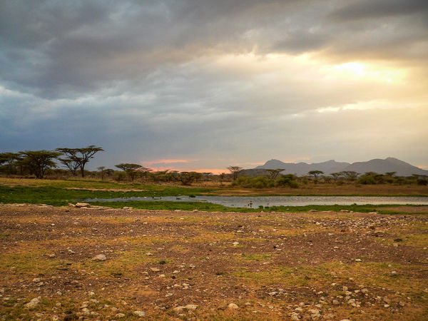 Shaba National Reserve in Northern Kenya Kenya National Park The Week On EyeEm Africa Beauty In Nature Cloud - Sky Day Field Landscape Mountain Mountain Range Nature No People Outdoors Scenics Sky Sunset Tranquil Scene Tranquility Travel Destinations Tree