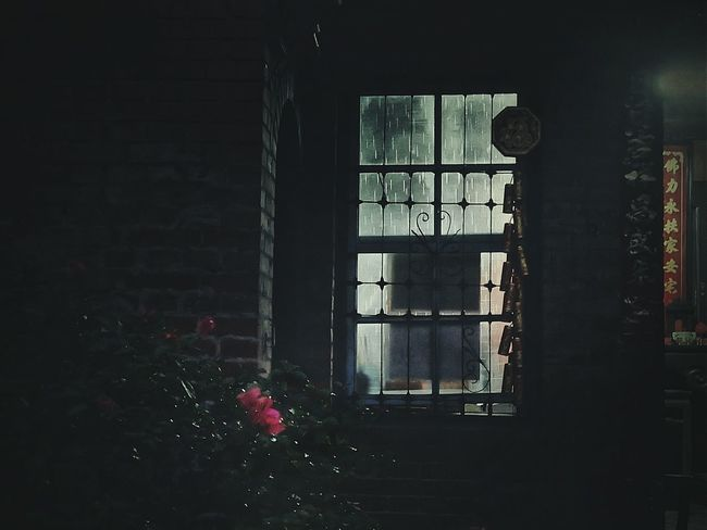 Untold Stories Window Light Darkness And Light Flower No People Window Red Brick Old Red Brick Warehouse Old House TakeoverContrast Night Night Photography Dark Dark Photography Light And Shadow Nostalgic Landscape Street Photography Streetphotography Eye4photography  EyeEm Best Shots My Favorite Photo Overnight Success ゆ故事 窓萌 2016.03.13