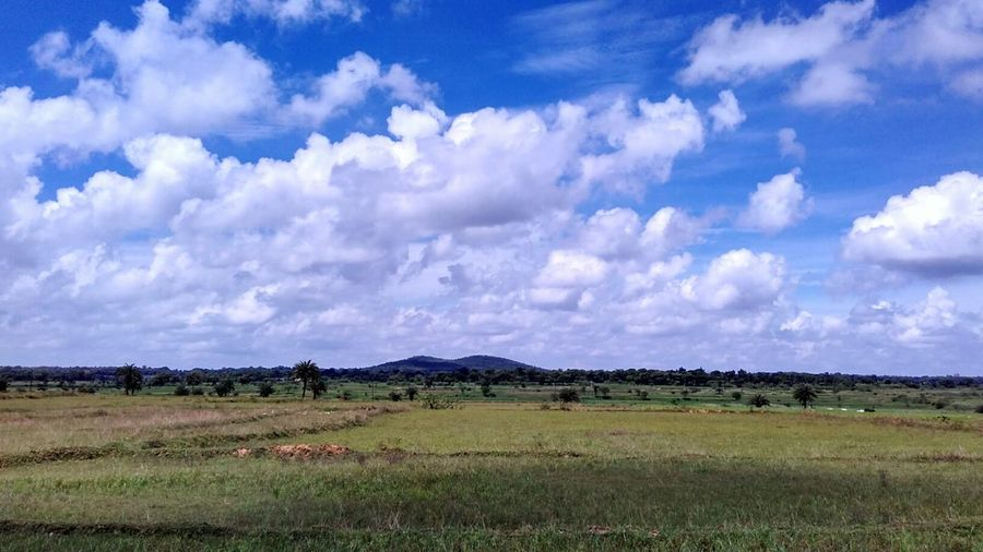 Blue Cloud - Sky Landscape Rural Scene Sky Scenics Nature Field Outdoors Tranquil Scene White Clouds India Beauty In Nature No People Day