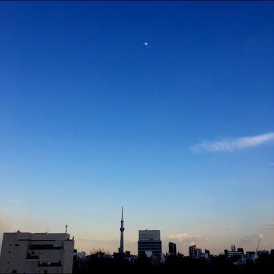Blue Sky 色のある世界 That's Me Tower