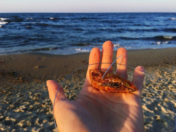 Cropped hand holding crab claw at beach