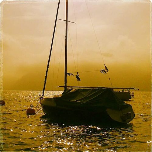 Water_collection Light And Shadow Autumn Collection Sailing Foggy Morning Unterach Am Attersee EyeEm Gallery Travel Photography Peace And Quiet Austria Attersee Oberösterreich