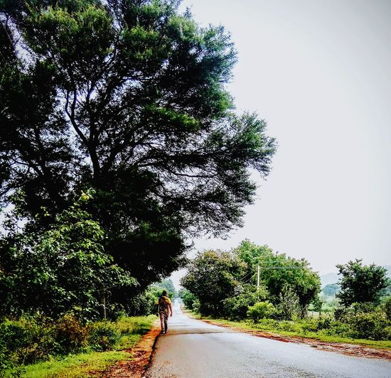 Road Tree Road The Way Forward One Person People Growth Day Outdoors Only Women Adults Only Adult Real People One Woman Only Nature Sky