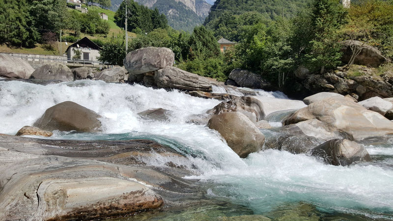 River in Verzasca Valley, Swizerland River Stone Rocks Swizerland Suisse  Locarno Verzasca Valley Summer Sun Relaxing Relax Europe Lavertezzo Water Nature Beauty In Nature No People Rock - Object Day Outdoors Tree The Great Outdoors - 2017 EyeEm Awards