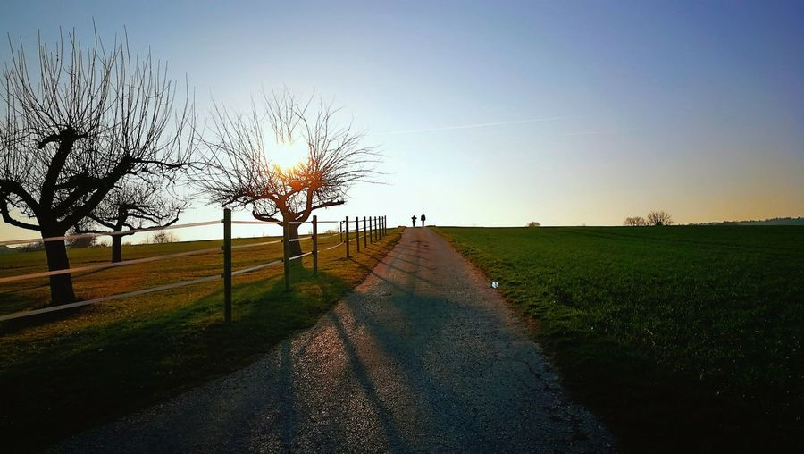 Sunset Sunset Silhouettes Everythingisbeautiful Evening Sky Evening Evening Light Silhouette Nature Photography Nature Nature On Your Doorstep Calm Tree Rural Scene Agriculture Field Sky Landscape Agricultural Field