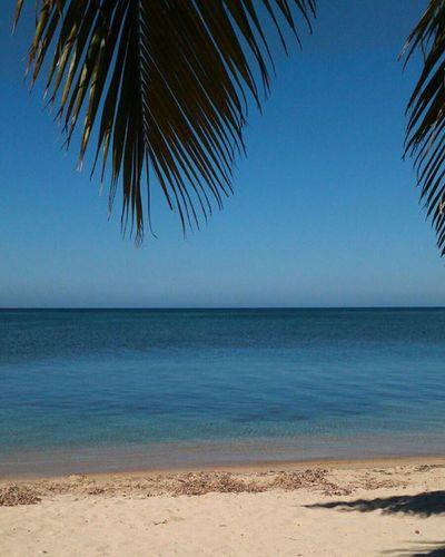 Nos vemos roatan hasta el próximo año... Roatan Honduras Vacaciones Westbaybeach Noviembre