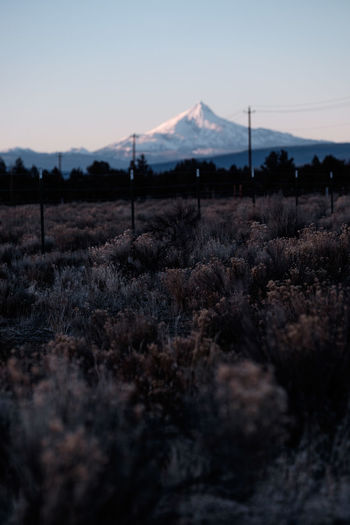 Central Oregon Mountain Nature Landscape Silhouette Scenics Agriculture No People Rural Scene Beauty In Nature Outdoors Oregon Perspectives On Nature Be. Ready. Beauty In Nature Mountain Range Snowcapped Mountain Snow Shades Of Winter