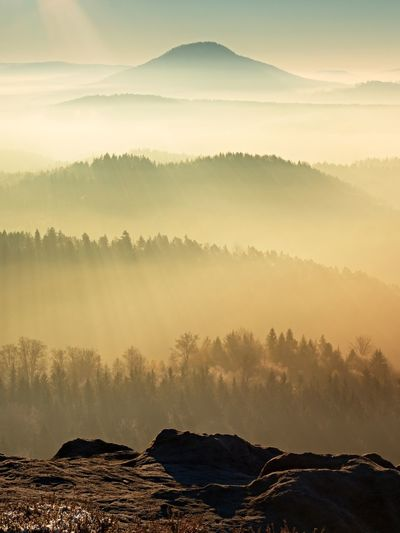 Fall daybreak. misty awakening in a beautiful hills. peaks of hills are sticking out from fog