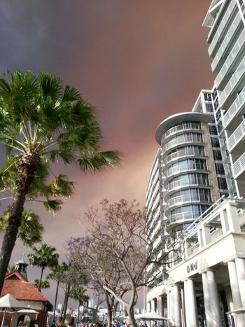 That Queer but Fascinating sky caused by Bushfire yesterday along Harbour Bay. No Edits No Filters #australia