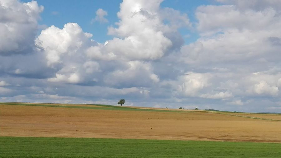 Landscape_photography Landscape Landscape_Collection Clouds And Sky Rural Scene Storm Cloud Agriculture Awe Social Issues Field Thunderstorm Environment Red Cloudscape Cultivated Land Agricultural Field Patchwork Landscape