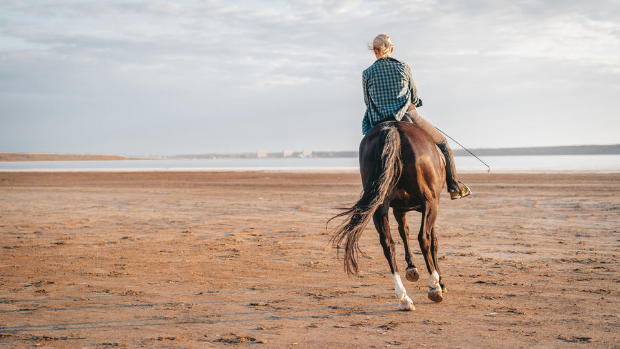 Woman riding horse on beach