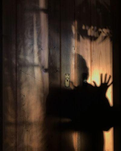 Close-up of shadow of hand on door