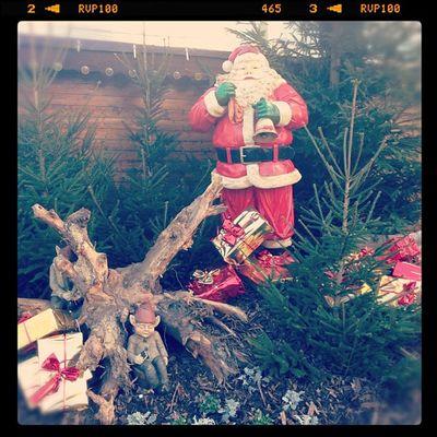 Weihnachtsmarkt galore!