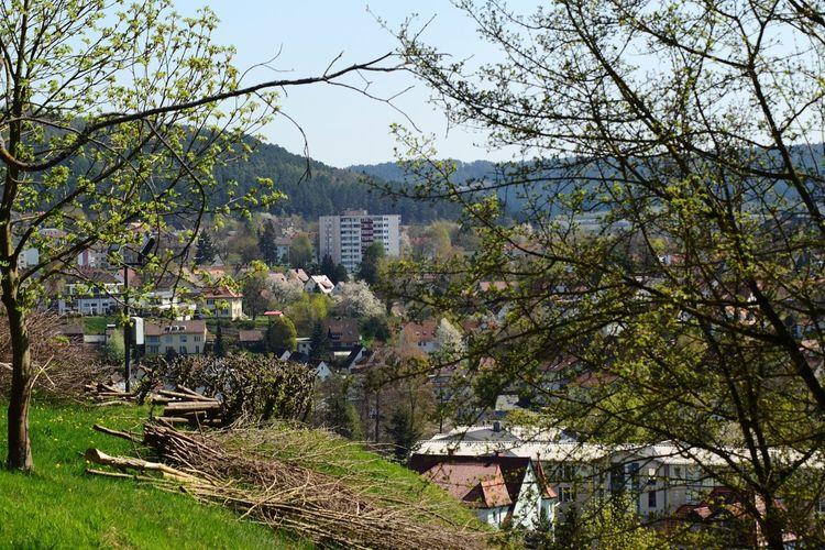 Kronach City