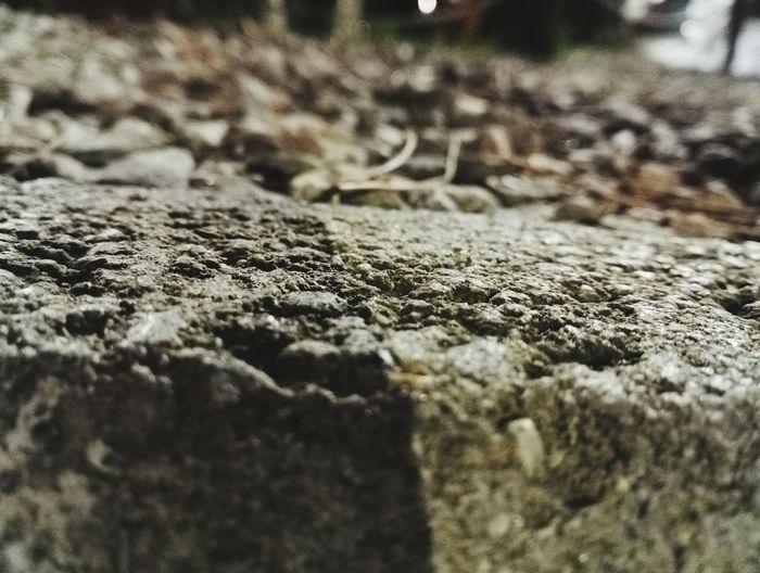 Nature Stone Grass Stones Original Photography First Eyeem Photo