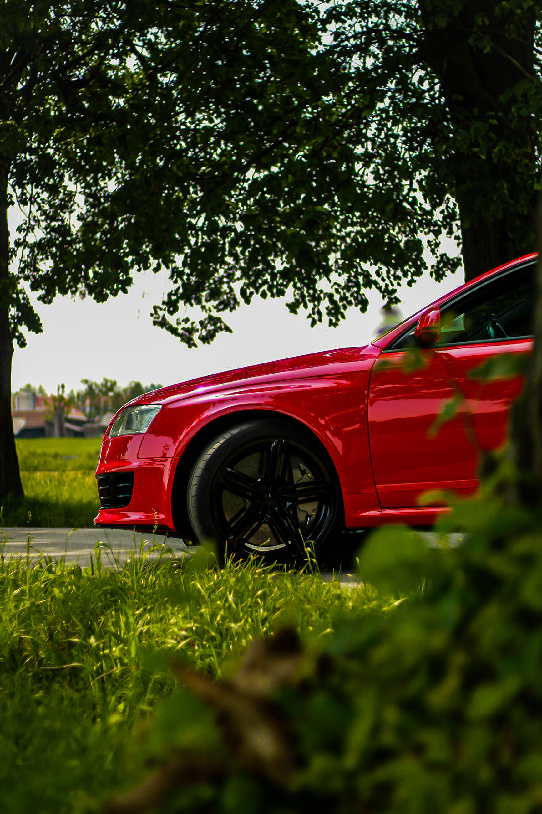 mode of transportation, car, red, plant, motor vehicle, transportation, tree, land vehicle, grass, nature, green color, day, selective focus, land, field, outdoors, no people, growth, sky, wheel